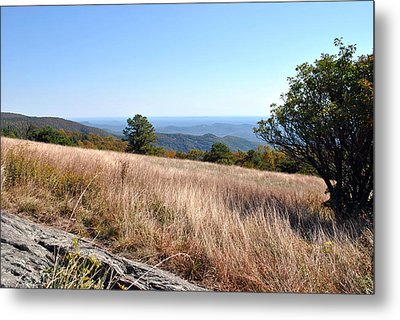 Metal Print featuring the photograph Blue Ridge View by Kelly Nowak