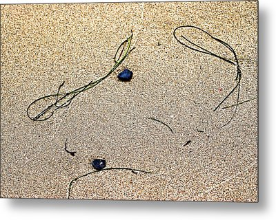 Metal Print featuring the photograph Blue Rocks And Seagrass by Bob Wall