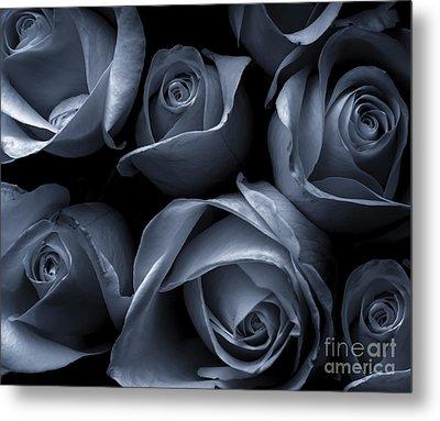 Blue Roses Metal Print by Diane Diederich