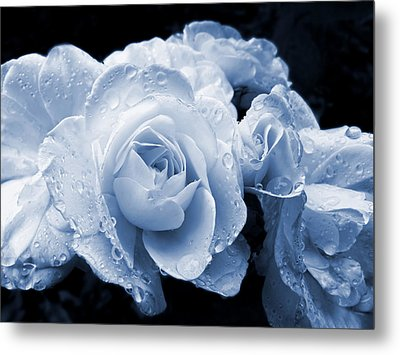Blue Roses With Raindrops Metal Print by Jennie Marie Schell