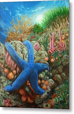 Blue Seastar Metal Print