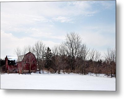 Metal Print featuring the photograph Blue Skies by Courtney Webster