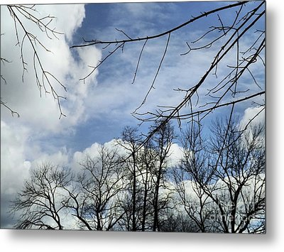 Metal Print featuring the photograph Blue Skies Of Winter by Robyn King