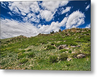 Blue Skies Metal Print by Tony Boyajian