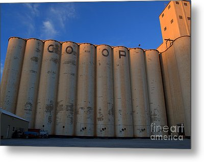 blue sky Co-op Metal Print