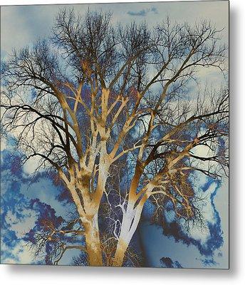 Blue Sky Tree Metal Print