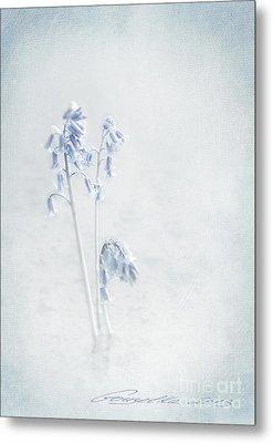 Blue Softness Metal Print