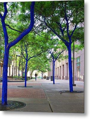 Blue Tree Walkway Metal Print by Mary Lee Dereske