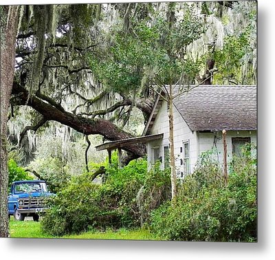 Blue Truck And Moss Metal Print by Patricia Greer