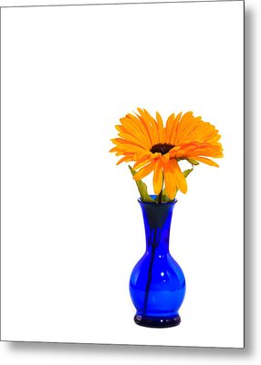 Metal Print featuring the photograph Blue Vase by Cecil Fuselier