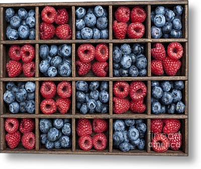 Blueberries And Raspberries  Metal Print by Tim Gainey