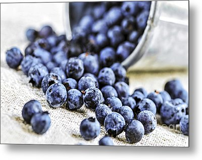 Blueberries Metal Print by Elena Elisseeva