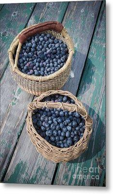 Blueberry Baskets Metal Print by Edward Fielding