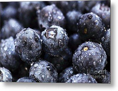 Blueberry Close Up Metal Print by John Rizzuto