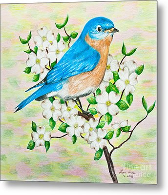 Bluebird And Dogwood Metal Print by Lena Auxier