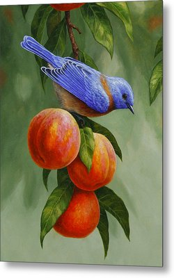 Bluebird And Peaches Greeting Card 1 Metal Print