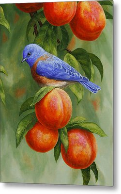 Bluebird And Peaches Greeting Card 2 Metal Print by Crista Forest