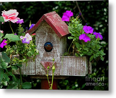 Bluebird House Metal Print