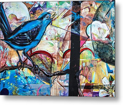 Bluebird Signs Metal Print by Terry Rowe