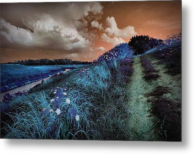 Bluegrass Metal Print by Linda Unger