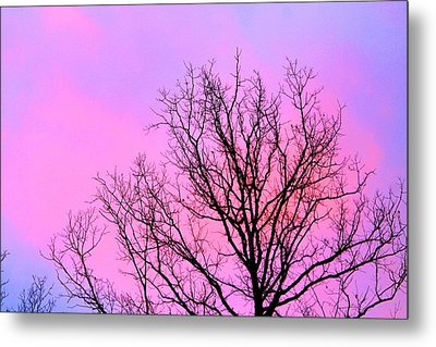 Metal Print featuring the photograph Blushing Sky by Candice Trimble