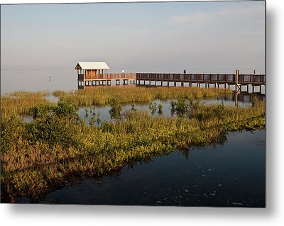 Boardwalk At South Padre Island Birding Metal Print by Larry Ditto