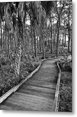 Boardwalk In Black And White 2 Metal Print