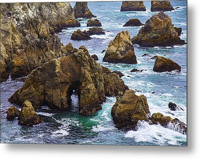 Bodega Head Metal Print by Garry Gay