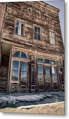 Bodie Metal Print by Cat Connor