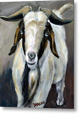 Bohr Goat With Blue Eyes Metal Print by Dottie Dracos