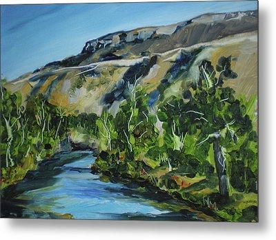 Boise River From Barber Park Bridge Metal Print