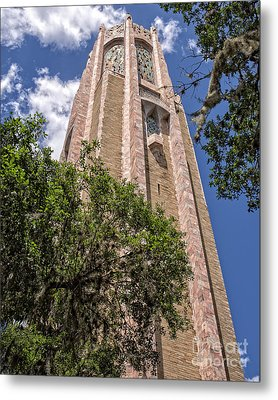 Bok Tower Lake Wales Florida Metal Print by Edward Fielding