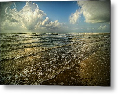 Bolivar Dreams Metal Print by Linda Unger