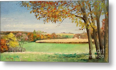 Bonjour Lands In Apple River Jo Daviess County Metal Print