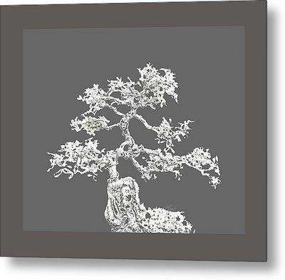Bonsai II Metal Print by Ann Powell