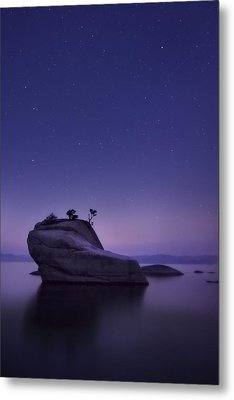 Bonsai Island Metal Print