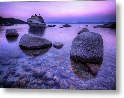 Bonsai Rock Metal Print