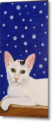 Metal Print featuring the painting Booboo by Alison Caltrider