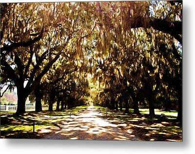 Boone Plantation Metal Print by Bill Howard