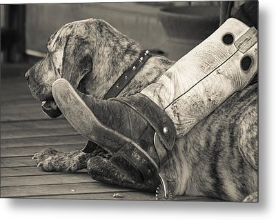Metal Print featuring the photograph Boot Scootin by Steven Bateson