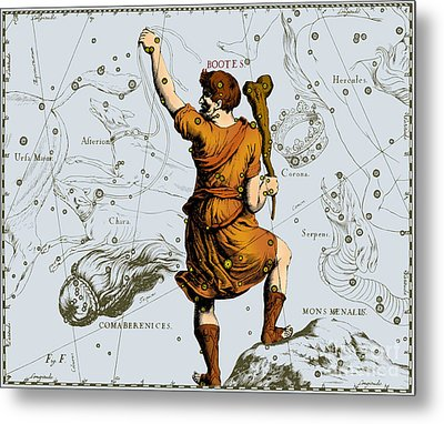 Bootes Constellation, 1687 Metal Print by Science Source