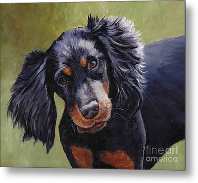 Boozer The Gordon Setter Metal Print by Charlotte Yealey