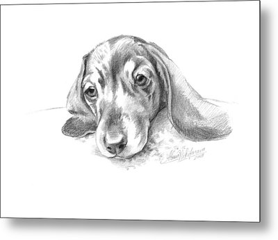 Bored. Little Dachshund Metal Print