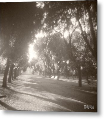 Borghese Gardens Path Metal Print by Beverly Brown