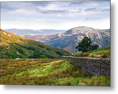 Borrowdale Valley In The Lake District Metal Print by Jane McIlroy