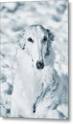 Borzoi Russian Hound Portrait Metal Print by Christian Lagereek