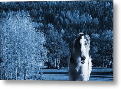 Borzoi Wolf Hound Emerging From Dark Blue Forest Metal Print by Christian Lagereek