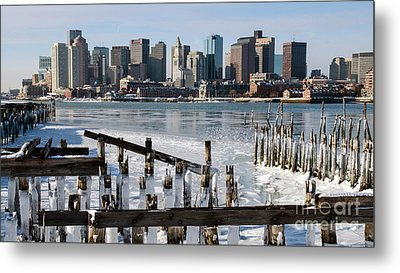 Boston - On The Rocks Metal Print by Stephen Flint