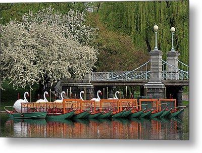 Boston Swan Boats  Metal Print by Juergen Roth