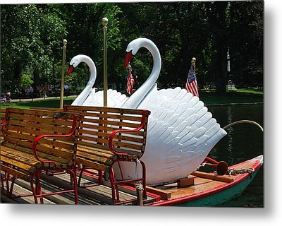 Metal Print featuring the photograph Boston Swans by Caroline Stella